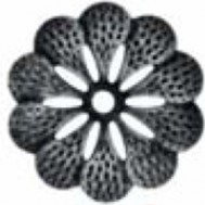 50.049 Decorative Wrought Iron Stamping Flowers&Leaves